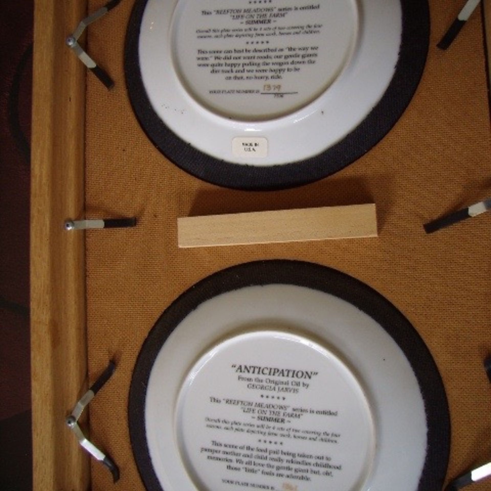 2 Georgia Jarvis Plates in frame -PROCEEDS TO STOLLERY HOSPITAL