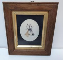 Victorian miniature oval watercolour portrait of a Stags head, initialled D.L, in fine wood frame,