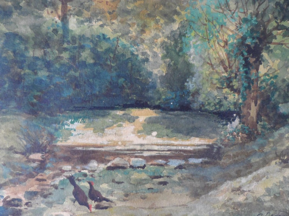 """G Devan 1907 watercolour """"Chickens by woodland pool"""", signed and dated, framed, The w/c measures"""