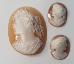 Finely carved large Victorian oval cameo depicting a young lady with flowers in her hair together