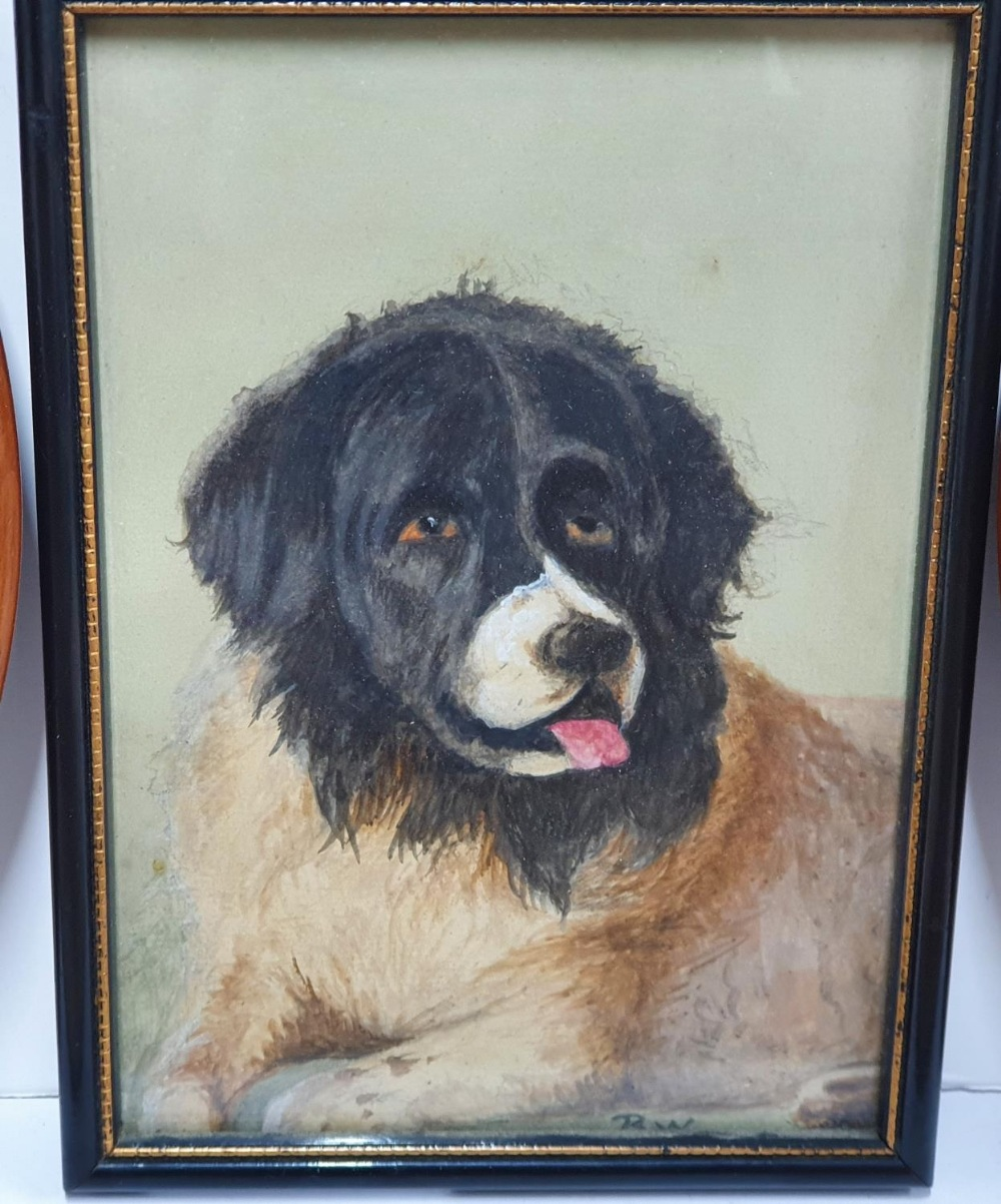 Bransby Williams, miniature watercolour portrait of a St Bernard dog together with a pair of - Image 2 of 6