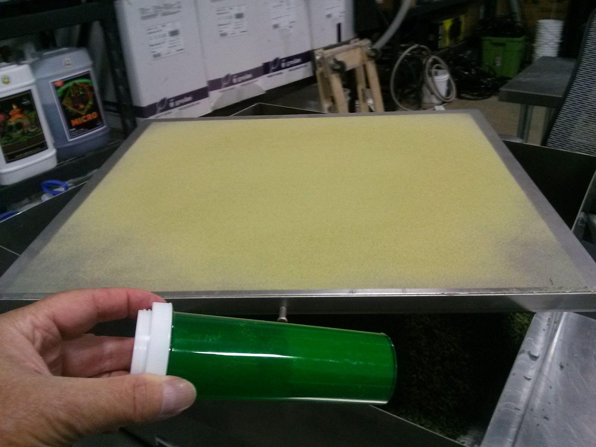 Unused/FactoryNew Revolution Cannabis & Hemp Flower Finisher System Model RDF 4300.100-200 lbs/8 hrs - Image 26 of 32