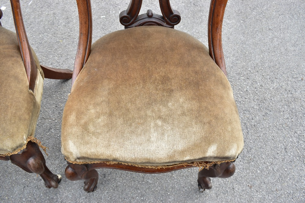 A set of four Victorian mahogany framed dining chairs raised on front cabriole supports to castors. - Image 2 of 3