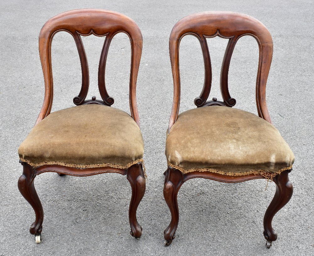 A set of four Victorian mahogany framed dining chairs raised on front cabriole supports to castors.