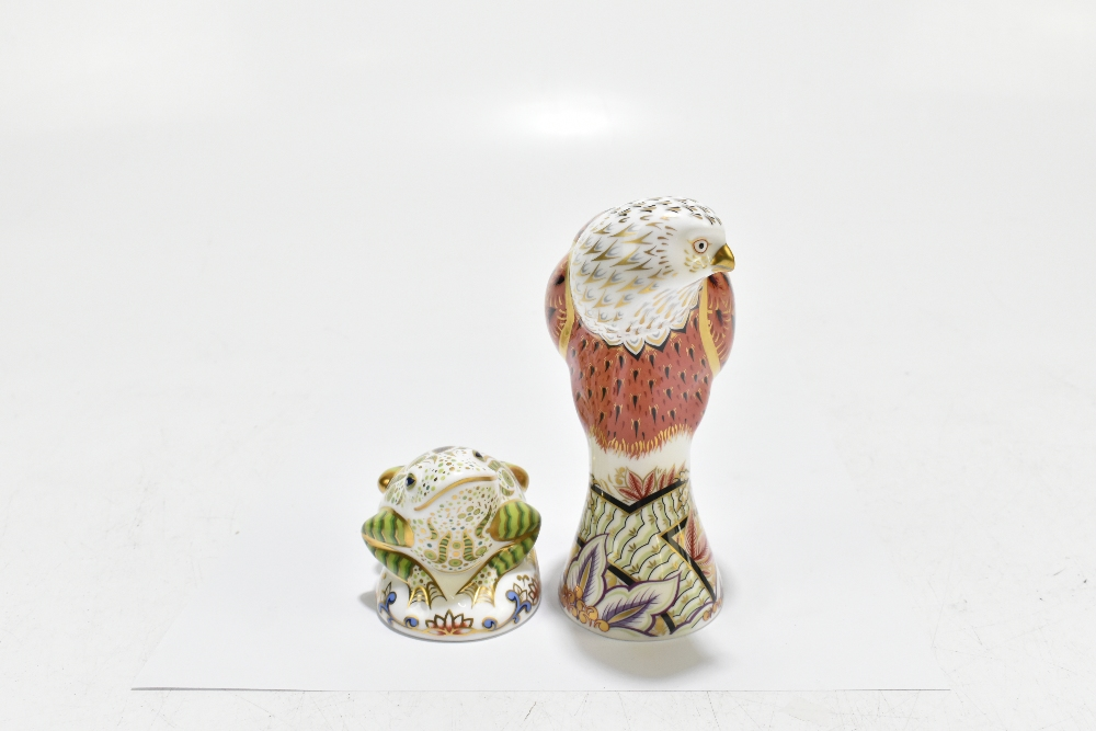 ROYAL CROWN DERBY; two animal form paperweights, comprising 'Red Kite', height 19cm, and 'Toad', - Image 6 of 8