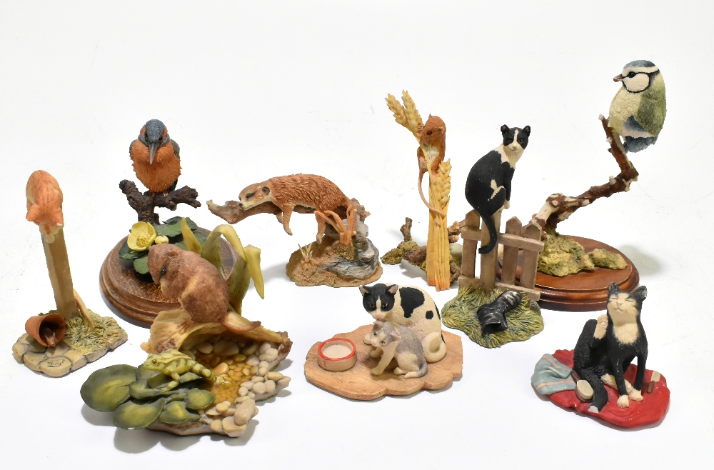 BORDER FINE ARTS; four assorted animal figures to include a model depicting two cats by Ayres,