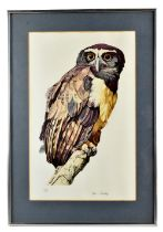 DON CORDERY; signed limited edition colour print, 'Eagle Owl', 101/200, signed in pencil, 52.5 x