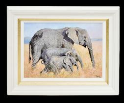 TONY FORREST (born 1961); signed limited edition print, 'Family Outing, 12/195, 34 x 44.5cm, framed.