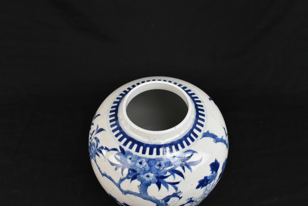 A late 19th century Chinese blue and white porcelain ginger jar and cover painted with exotic - Image 5 of 8