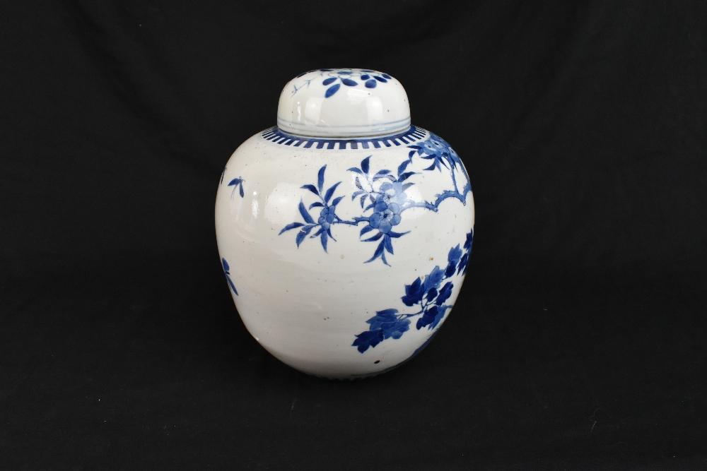 A late 19th century Chinese blue and white porcelain ginger jar and cover painted with exotic - Image 2 of 8