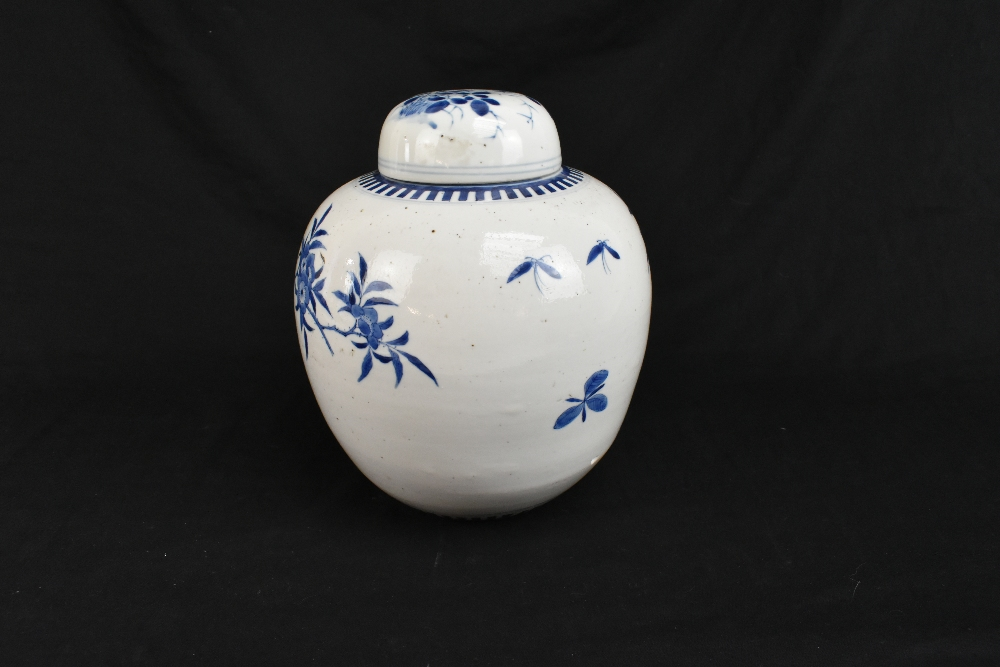 A late 19th century Chinese blue and white porcelain ginger jar and cover painted with exotic - Image 3 of 8