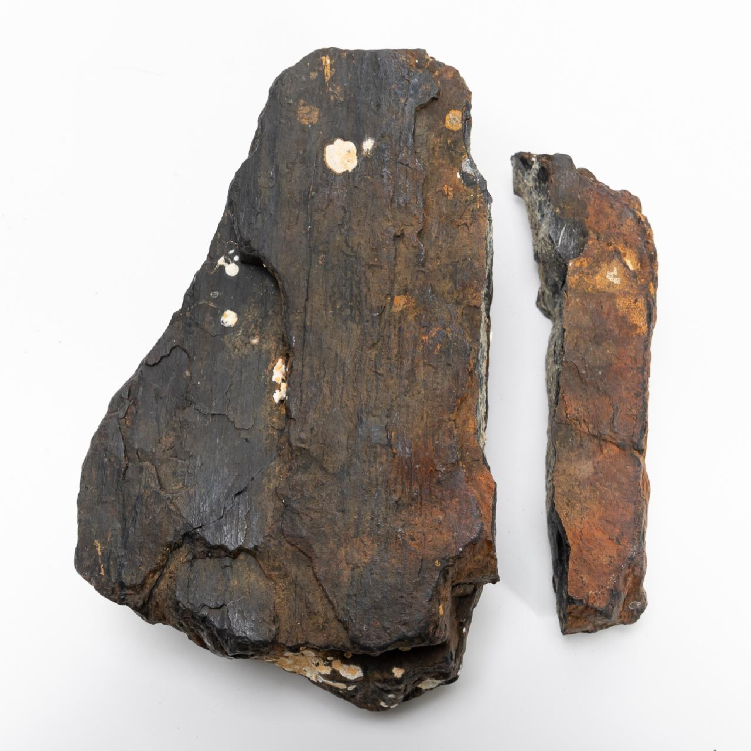 RMS CARPATHIA, SALVAGED COAL IN TWO PIECES - Image 3 of 7