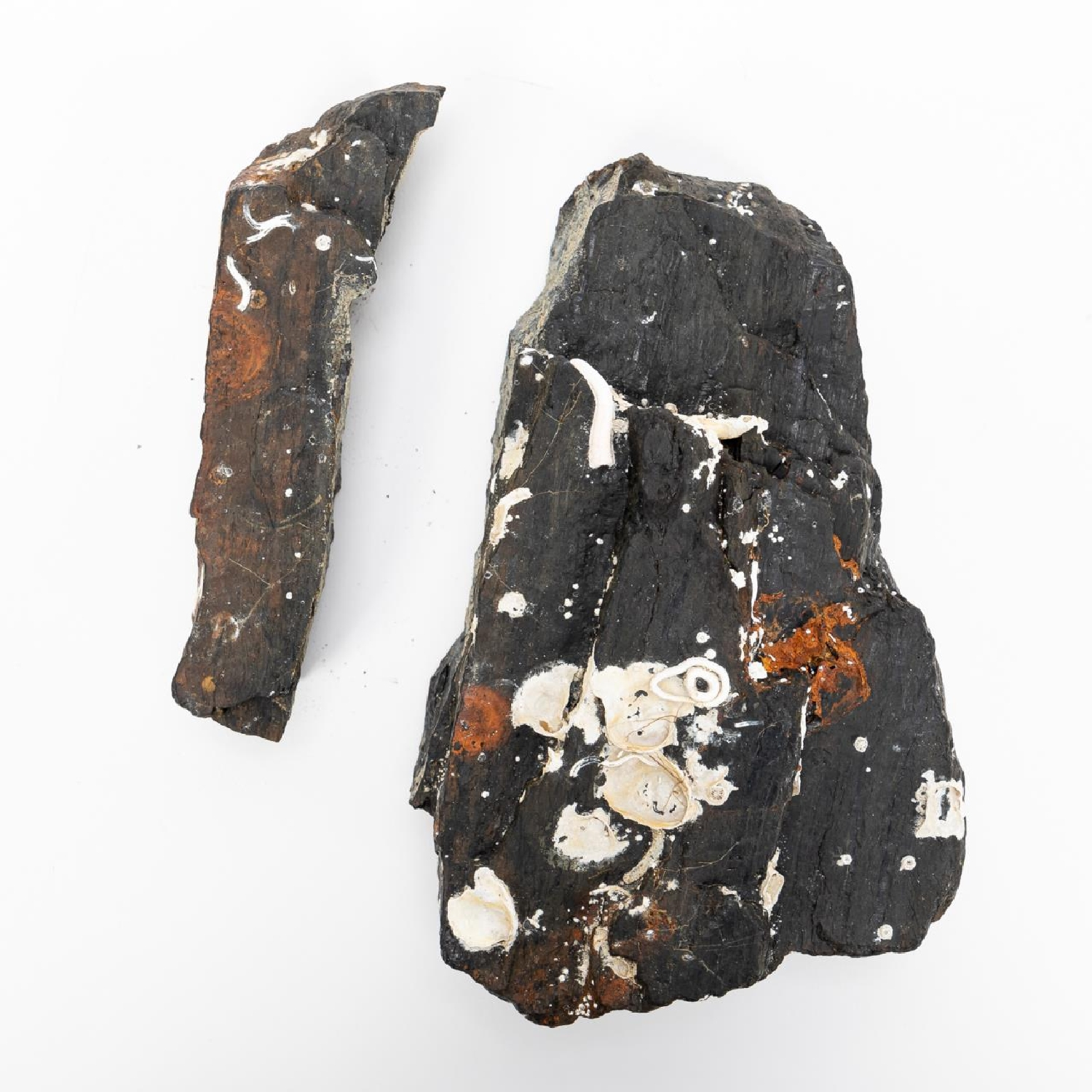 RMS CARPATHIA, SALVAGED COAL IN TWO PIECES - Image 2 of 7
