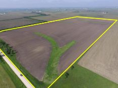 80 acres farmland m/l