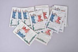 France. Nos drapeaux : avec historiques régimentaires (25 cartes couleurs)