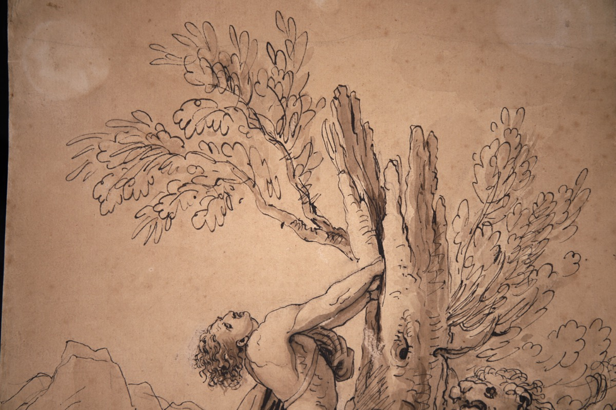 XVII Italian Old Master Drawing of Milo of Croton - Image 5 of 11