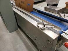 Design Services case settling conveyor