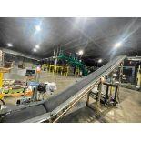 Buschman mild steel incline conveyor
