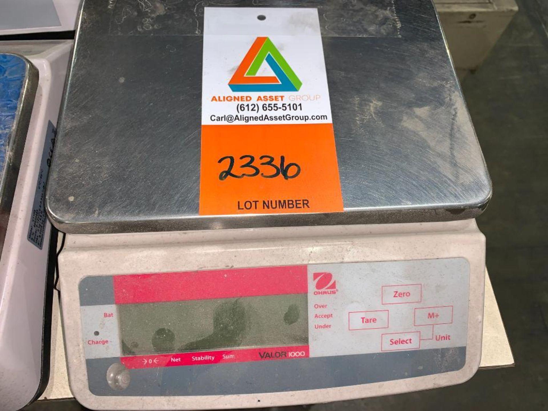 OHaus digital scale