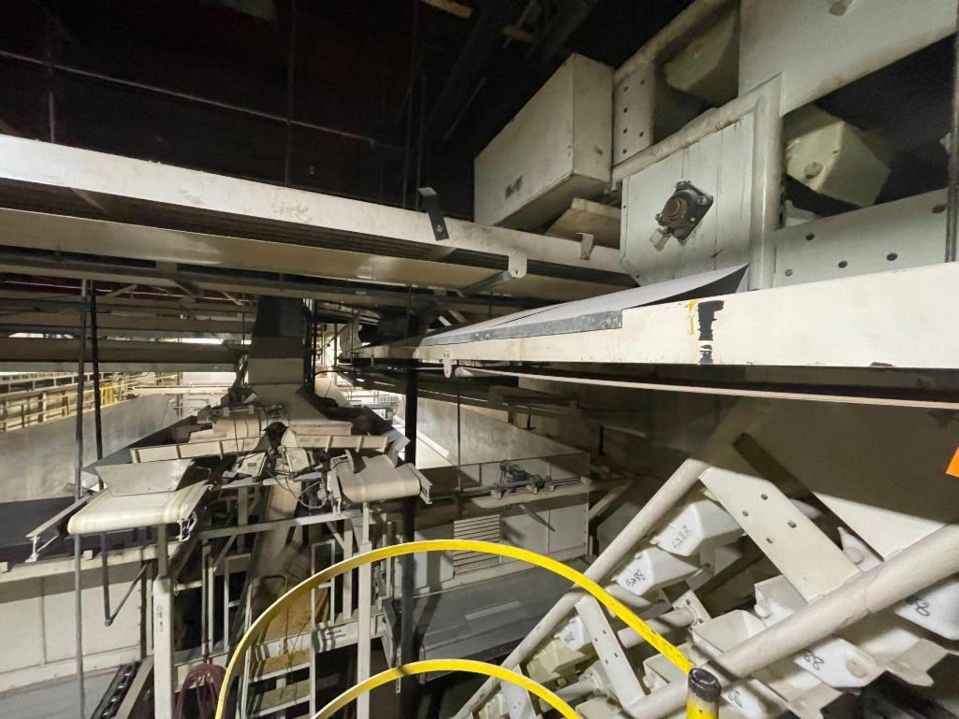 2 Aseeco horizontal overhead mild steel belt conveyors - Image 2 of 9