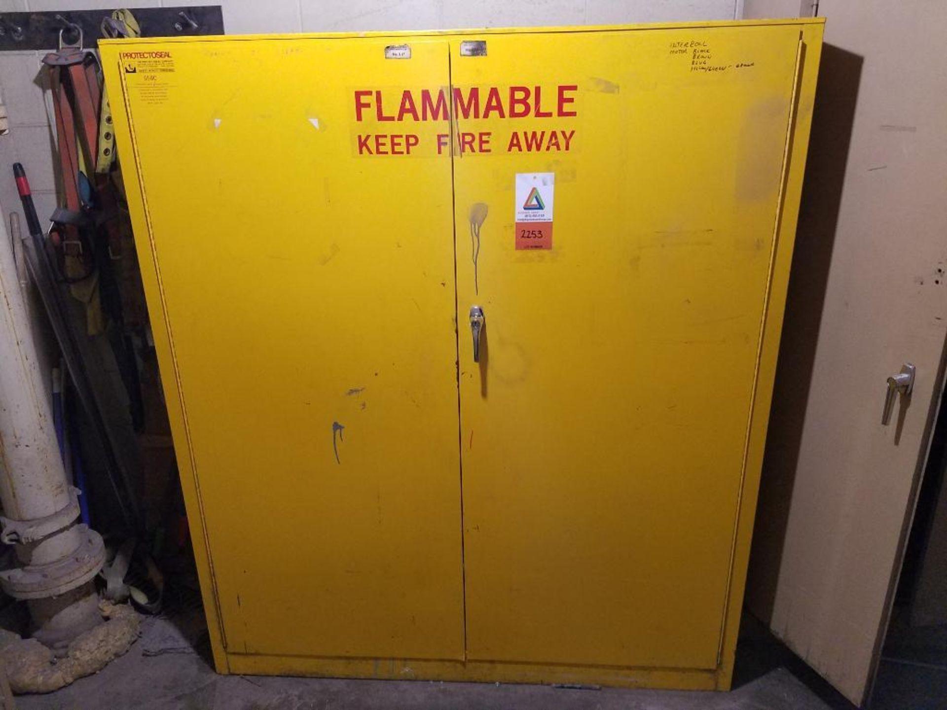 Protectoseal 2-door flammable cabinet