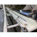 mild steel horizontal conveyor