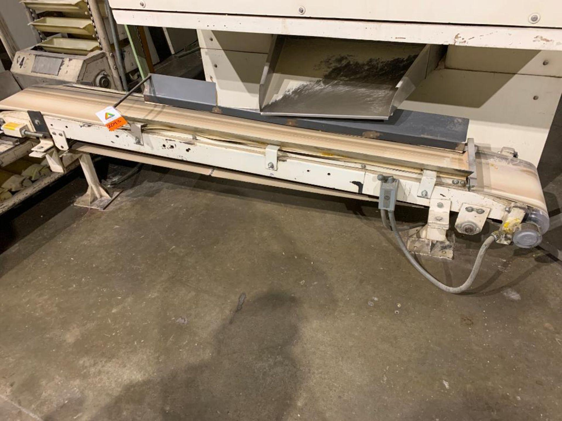 mild steel conveyor