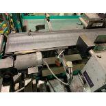 BMI stainless steel conveyor