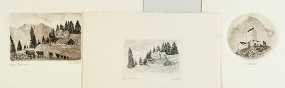Alp Schrina am Walensee, 3 Teilansichten