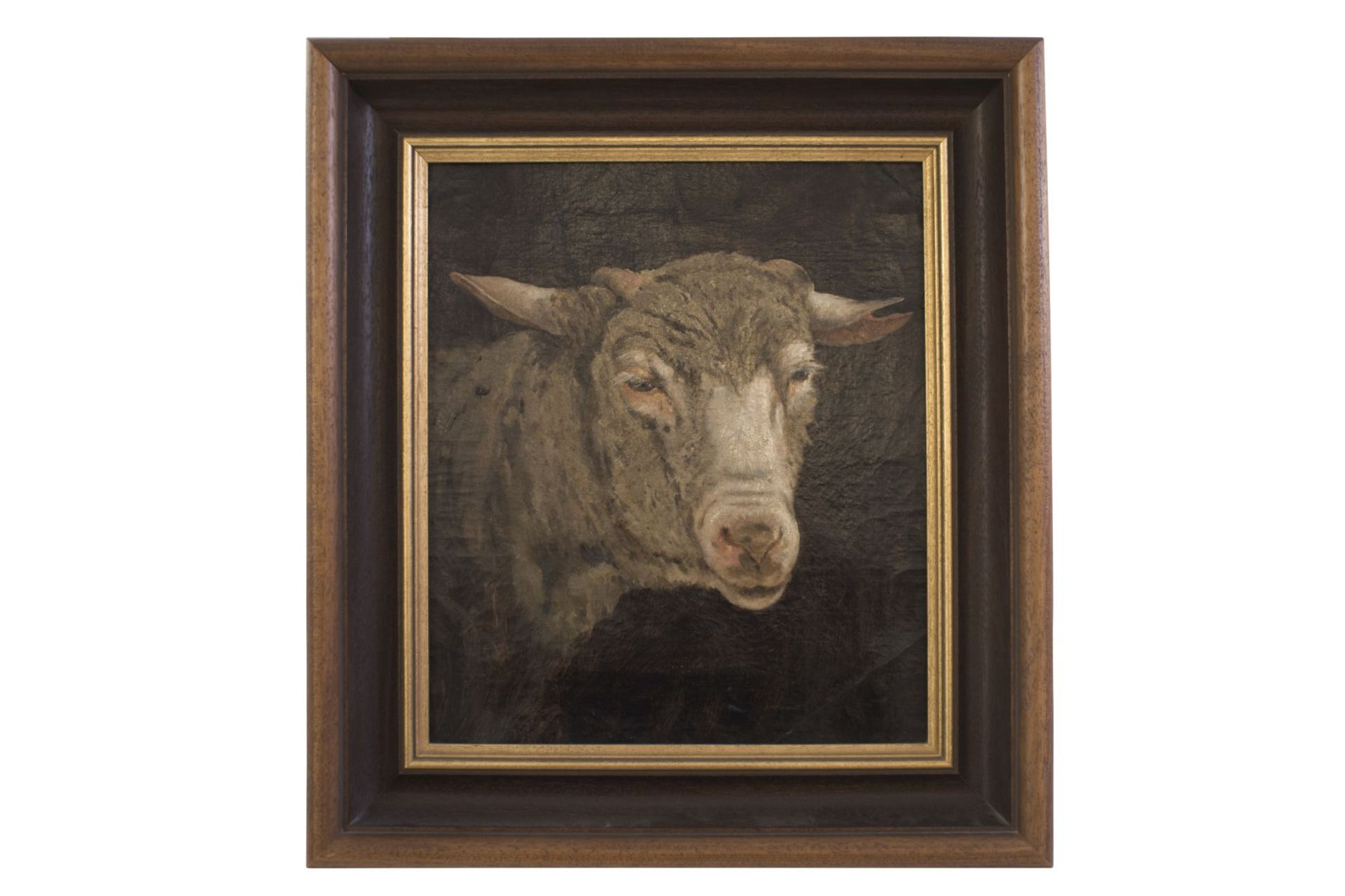 """Painter end of the 19th century """"Sheep's head"""""""