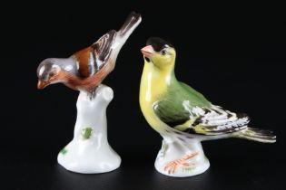 Meissen Zeisig und Buchfink, porcelain bird siskin and chaffinch,