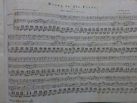 Schubert - Drang in die Ferne