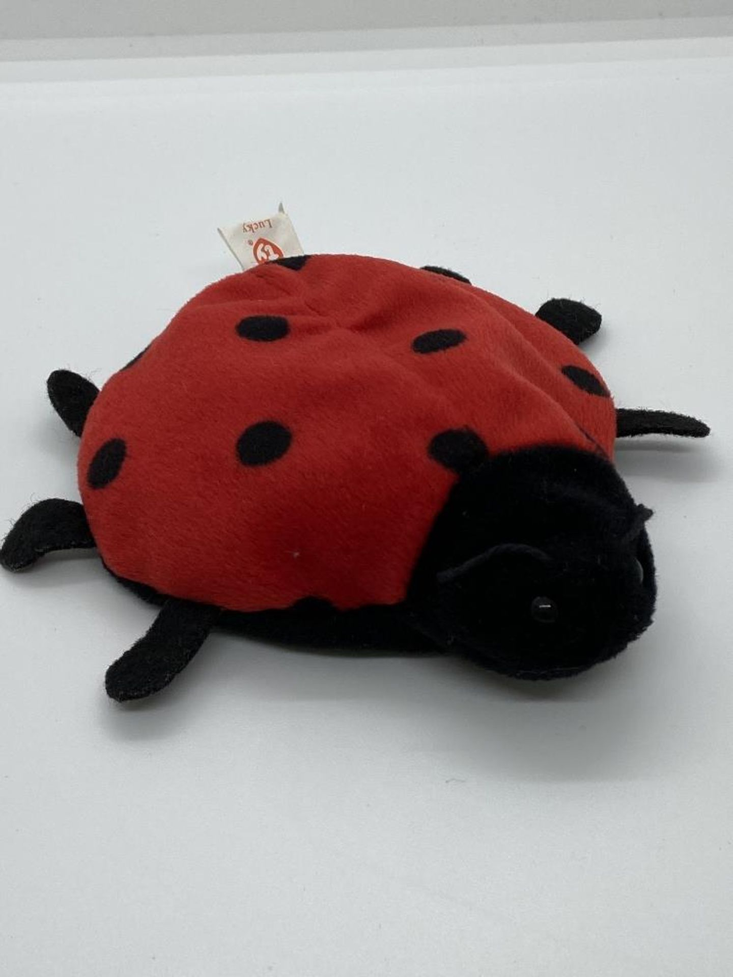 Ty Beanie Babies Lucky, The Ladybug, EARLY GEN 1993, PVC Pellets, w/o Hang Tag - Image 2 of 6
