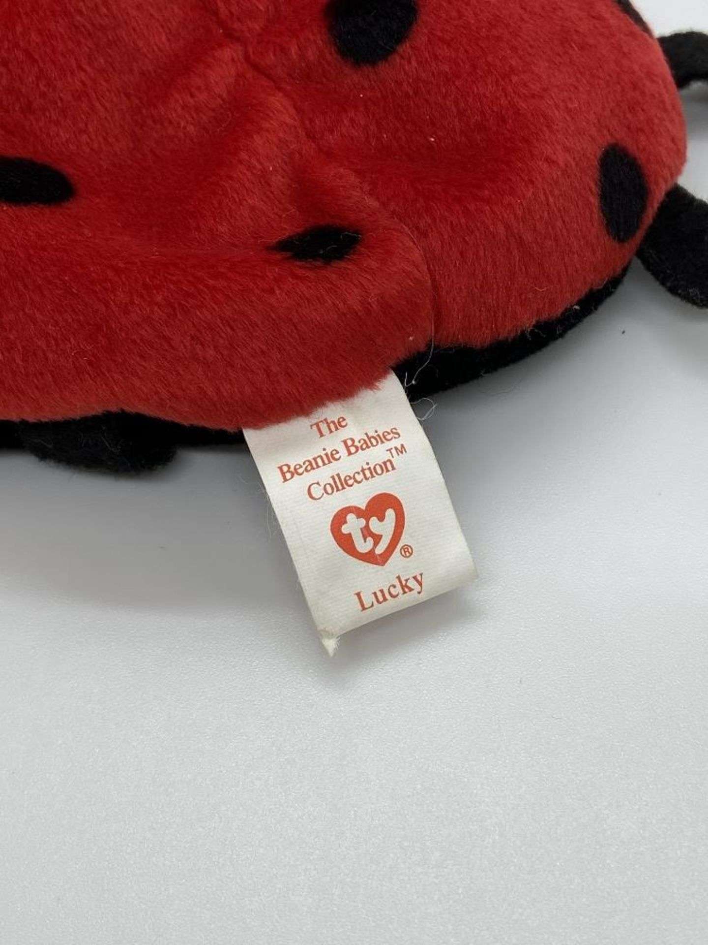 Ty Beanie Babies Lucky, The Ladybug, EARLY GEN 1993, PVC Pellets, w/o Hang Tag - Image 5 of 6