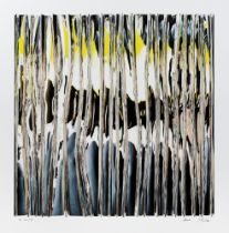 Dana Maitec & Stéphane Maitec, Mirror Reflections #97