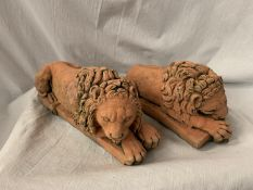 A PAIR OF TERRACOTTA DOORSTOPS/BOOKENDS IN THE FORM OF LIONS L:30CM