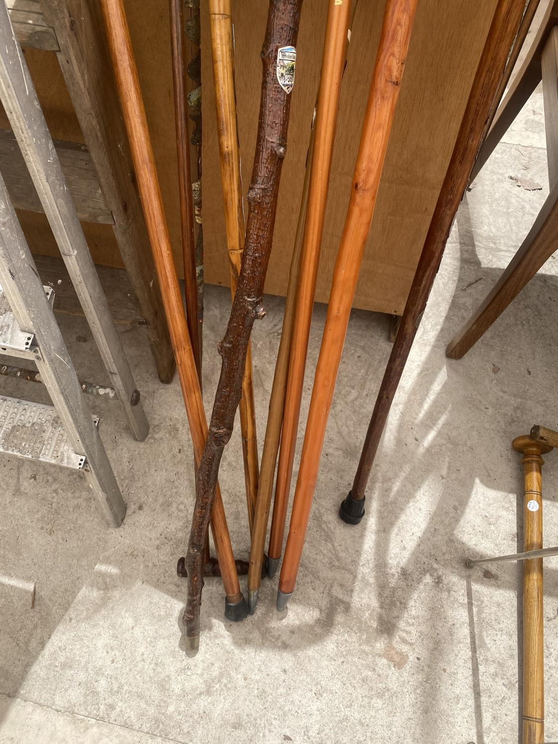 A COLLECTION OF DECORATIVE AND UNUSUAL WALKING STICKS - Image 4 of 4