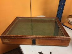 A LARGE GLASS TOPPED WOODEN DISPLAY BOX 68CM X 51CM