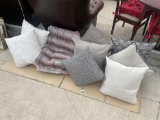 A LARGE QUANTITY OF SCATTER CUSHIONS