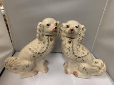 A PAIR OF STAFFORDSHIRE FLAT BACK SPANIELS APPROX 32CM HIGH