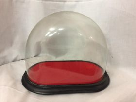 A VICTORIAN GLASS DOME WITH BASE