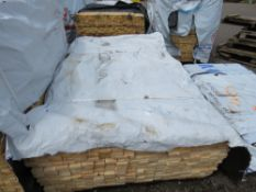 PACK OF UNTREATED TIMBER FENCE BOARDS, 1.9M LENGTH X 70MM X 20MM WIDTH APPROX.
