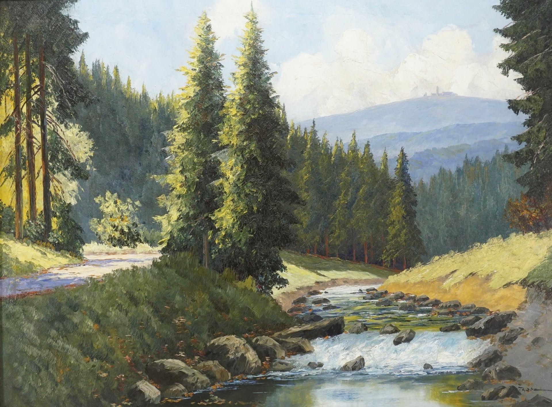 Fritz Thate, Flusslauf der Ilse mit Brockenblick