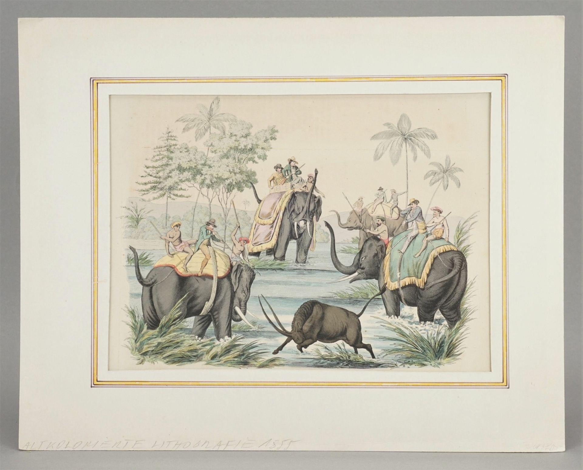 Jagd mit Elefanten in Indien - Bild 2 aus 3