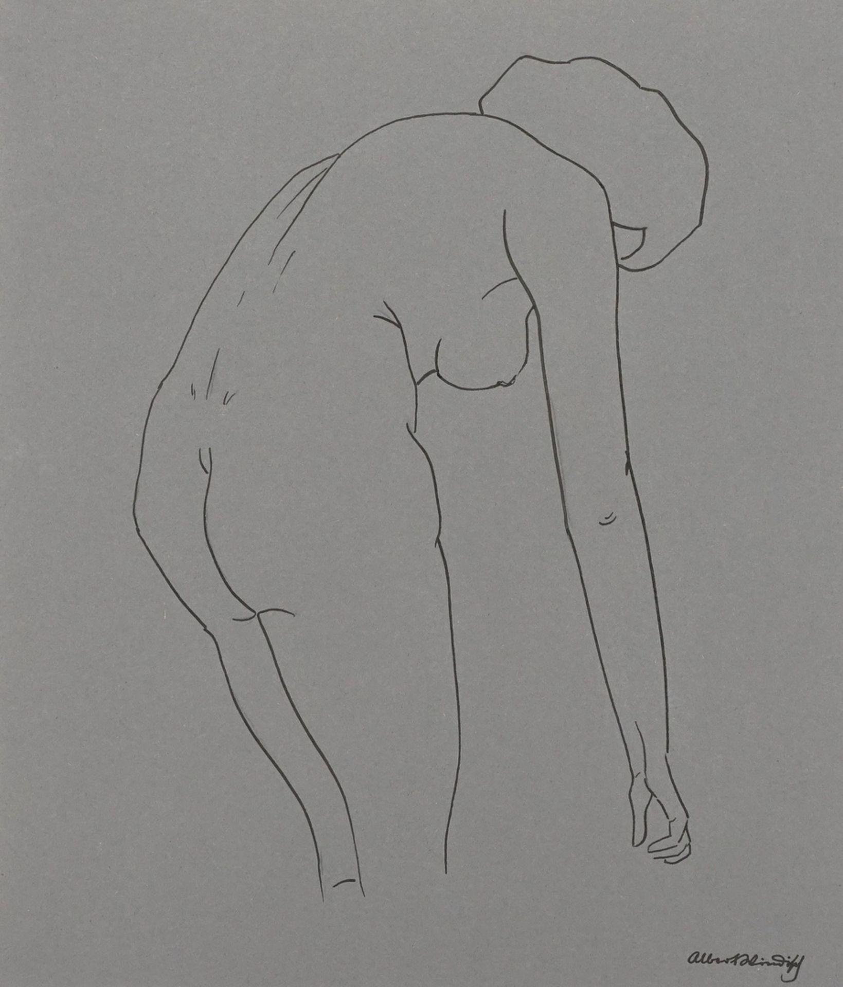 Albert Windisch, Weiblicher Rückenakt, nach vorn gebeugt