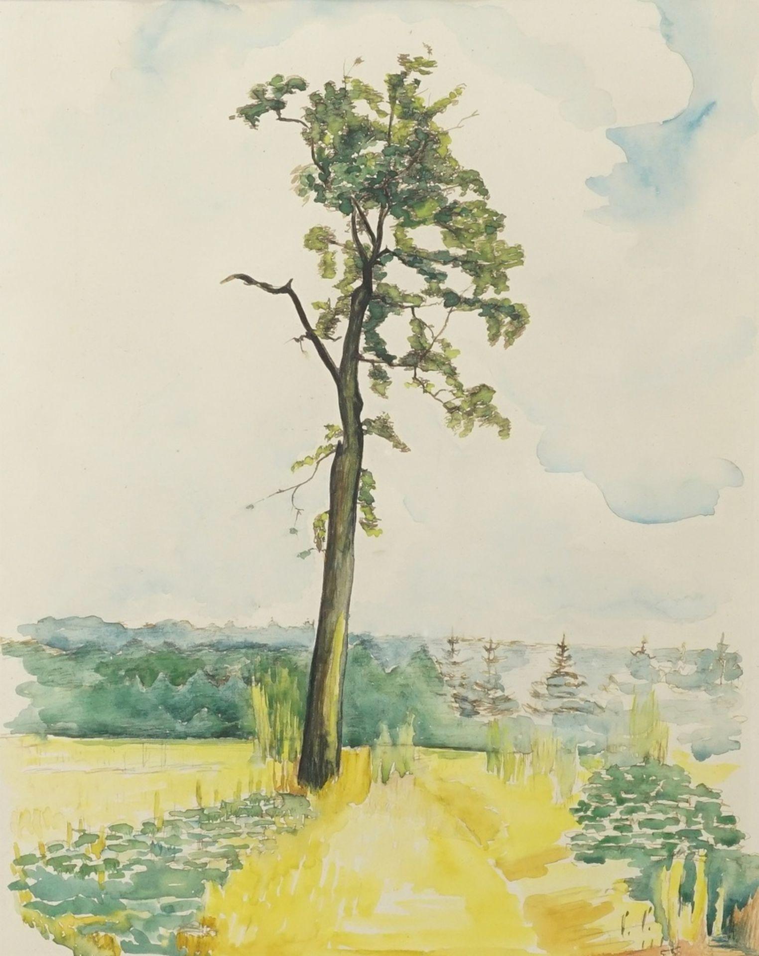 "Reinhold Rossig, ""Baum am Feldrain"""