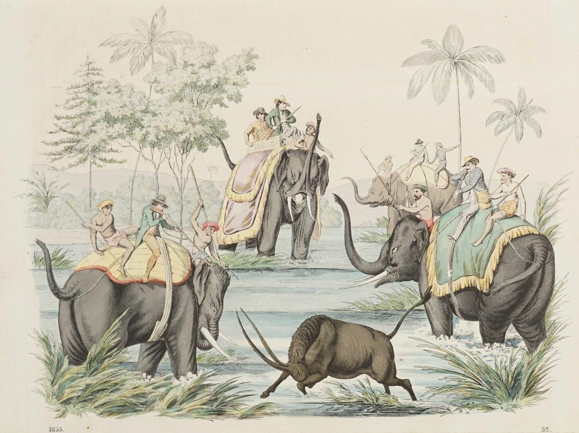 Jagd mit Elefanten in Indien