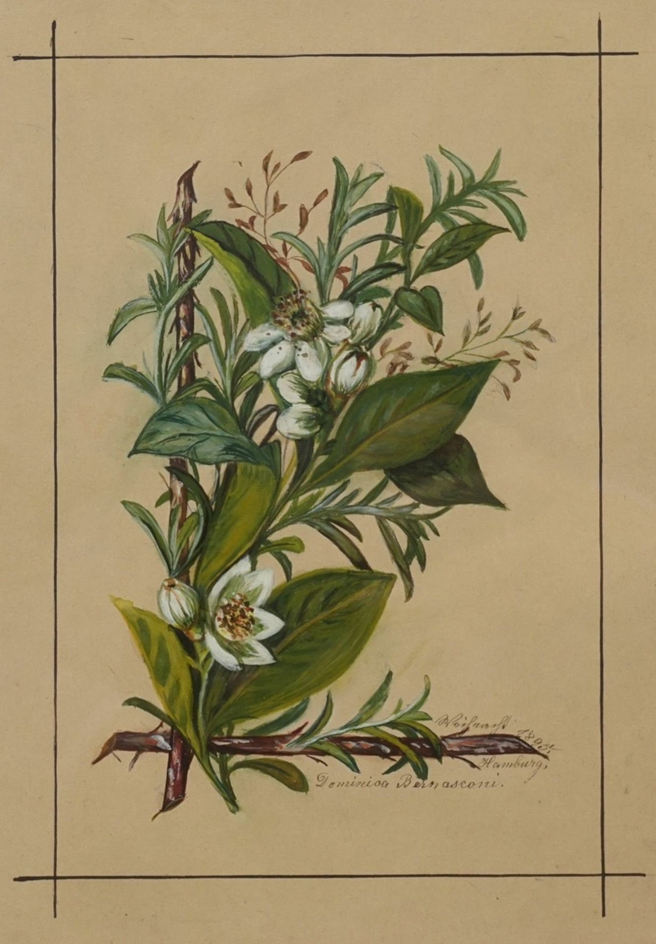 Dominica Bernasconi, Weihnachtliches Bouquet