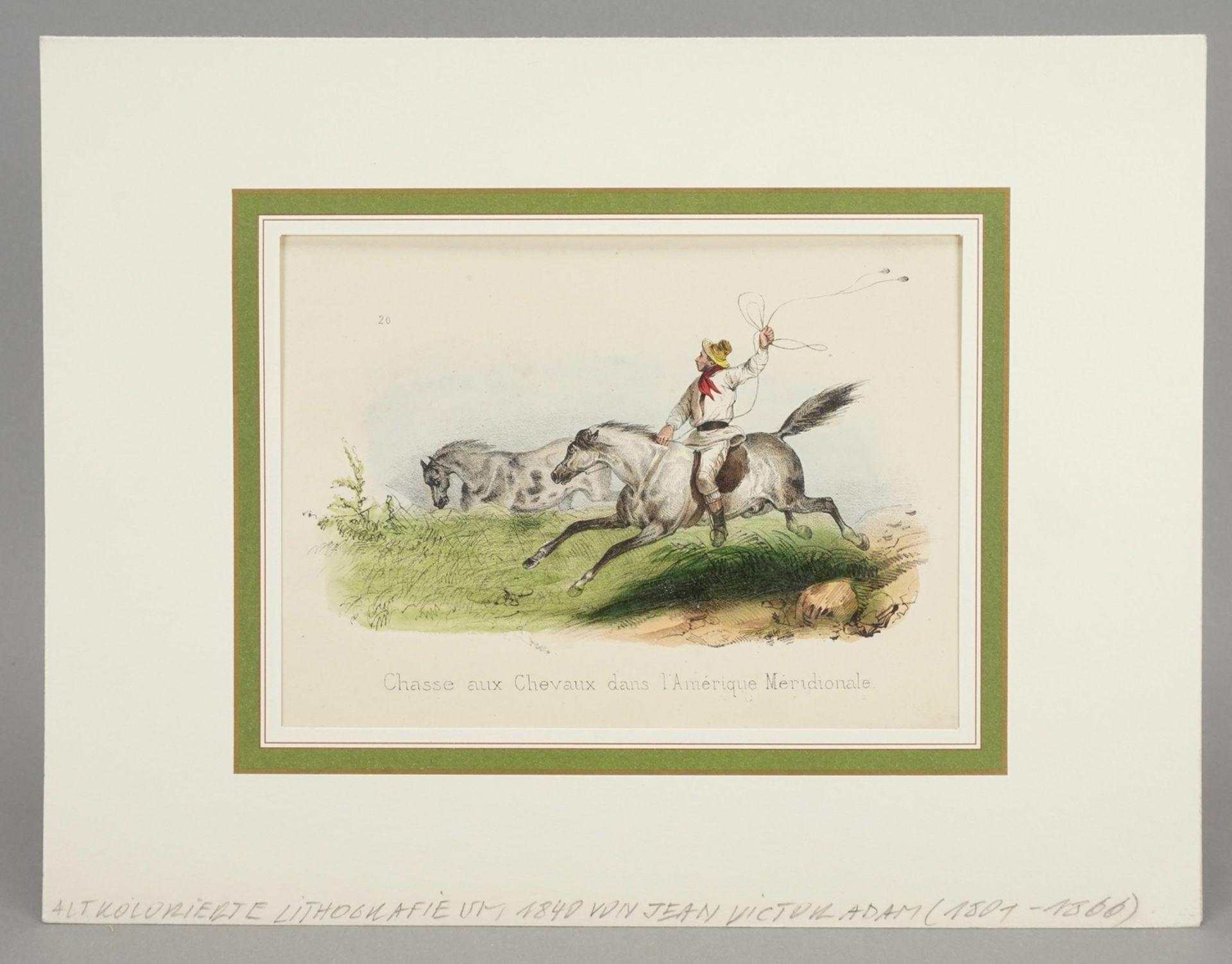 """Victor Adam, """"Chasse aux Chevaux dans l'Amérique Meridionale"""" (Pferdejagd in Mittelamerika) - Bild 2 aus 3"""