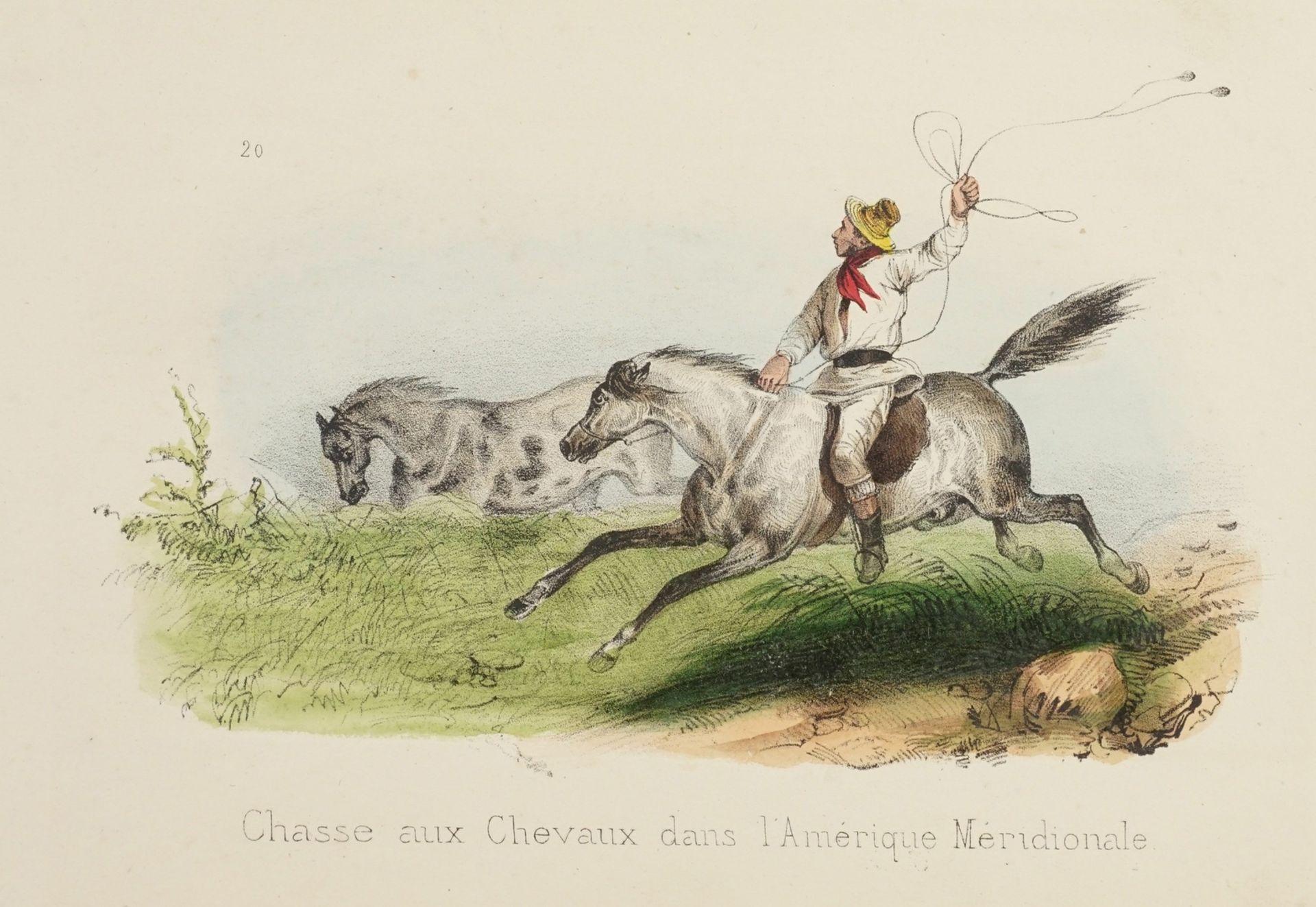 """Victor Adam, """"Chasse aux Chevaux dans l'Amérique Meridionale"""" (Pferdejagd in Mittelamerika)"""